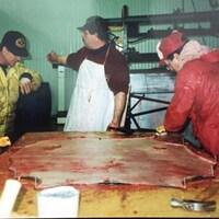 Cinq hommes travaillent une peau de phoque.