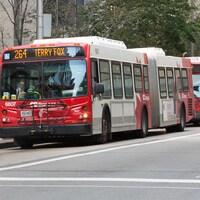 Quatre autobus d'OC Transpo dans une rue non précisée d'Ottawa.