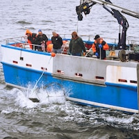 Un bateau avec des hommes qui regardent un engin de pêche qui tombe à l'eau.
