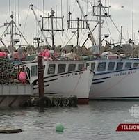 Bateaux de pêche au homard accostés.