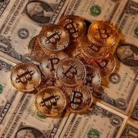 Des pièces de bitcoin et des dollars américains.
