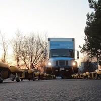Une capture d'écran montrant une rangée de robots zoomorphes jaunes devant un camion bleu.
