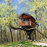 Le site touristique Au diable vert, en Estrie, propose des séjours dans les arbres.