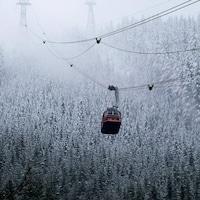 Un téléphérique de Grouse Mountain suspendu au-dessus d'arbres enneigés.