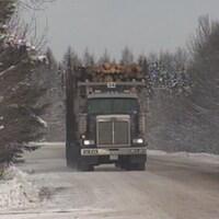 Des camions de transport de bois