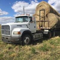 Dans une ferme, par une belle journée d'été, un camion transporte des bottes de foin.