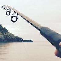 Une canne à pêche.