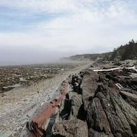 Des formations rocheuses en bordure du fleuve à marée basse.