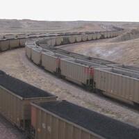 Des trains transportent du charbon.