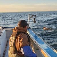 Un pêcheur dans son bateau regardant le chevreuil en train de nager.