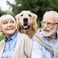 Un couple entourant un chien.