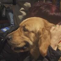 Une résidente de North York prend dans ses bras un chien de thérapie.