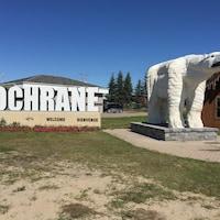 Une statue d'un ours polaire.
