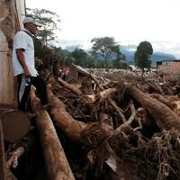Un homme regarde les arbres déracinés par le glissement de terrain en Colombie