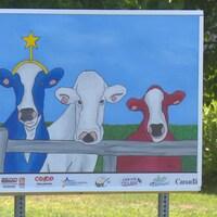 Une affiche avec des vaches aux couleurs du drapeau acadien.