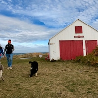 Un couple marche avec ses chiens à Métis-sur-Mer, en Gaspésie.