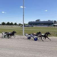 Depuis 1830, l'Hippodrome accueille des courses de chevaux.