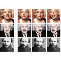 Trois rangées de photos. La première contient des photos de Marilyn Monroe, la seconde des photos d'Albert Einstein et la troisième des photos de Fedor Dostoïevski.
