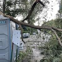 Des branches d'arbres tombées sur une structure extérieure.