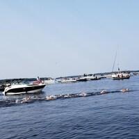 Des nageurs s'élancent dans le lac Saint-Jean.