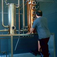 Le distillateur surveille les cadrans de sa machine.