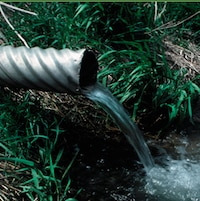 Gros plan sur un tuyau dont l'eau se déverse dans un ruisseau avec des plantes vertes autour.