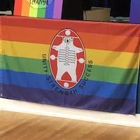 Le drapeau de la fierté avec le logo de la Nation Nishnawbe Aski.