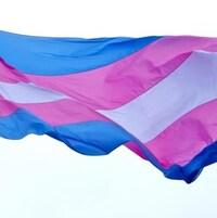 Le drapeau transgenre est doté de deux bandes bleues, deux bandes rose et une bande blanche au centre.
