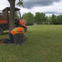 Un employé fait des travaux d'entretien d'un terrain.