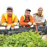Travailleurs cris d'Hydro-Québec sur le chantier de la dérivation de la rivière Rupert.