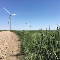 Des éoliennes dans le parc Blackspring Ridge, dans le sud de l'Alberta. Enbridge détient 50% du parc.