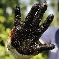 Un homme montre sa main couverte de pétrole brut.