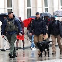 Une patrouille de police avec chien renifleur à l'extérieur du palais de justice, alors qu'on voit des gens avec des parapluies derrière.