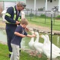 Un garçon et son père donnent des morceaux de pain à des oies derrière un enclos.