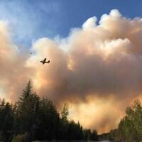 Un petit avion se déplace à travers un nuage de fumée se trouvant au-dessus d'une forêt.