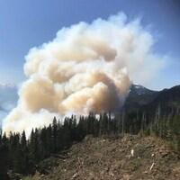 Un panache de fumée s'élève au-dessus d'une forêt.