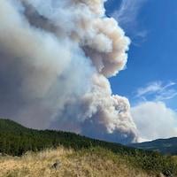 Un immense panache de fumée s'élève depuis le feu de White Rock Lake.