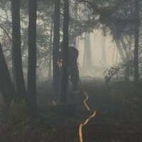 Un feu de forêt et un pompier dans la brume des flammes.