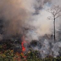 Photo aérienne montrant un incendie faisant rage dans la forêt amazonienne à environ 65 km de Porto Velho, dans l'état de Rondonia, au nord du Brésil, le 23 août 2019.