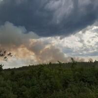 De la fumée émane d'une forêt.