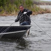 Herb Lehr, dans une chaloupe, en train de remonter son filet de pêche.