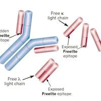 Une schéma de molécule.