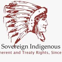 Logo de la FSIN : Portait d'un chef de profil en tenue traditionnelle
