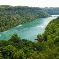 La rivière et la faune.