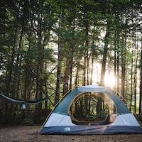 Une tente au milieu d'une forêt.