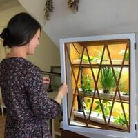 Une femme regarde un meuble dans lequel pousse des plantes