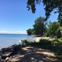 Vue d'une plage ombragée par des arbres