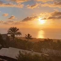 Vue sur les palmiers et un coucher de soleil.