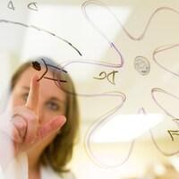 Une scientifique montre du doint un élément d'un diagramme dessiné sur une fenêtre transparente.