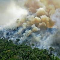 Vue aérienne d'une zone brûlée de la forêt amazonienne.